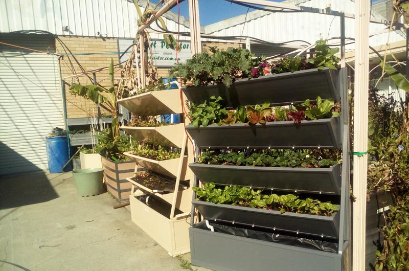 Planter Boxes Cairns